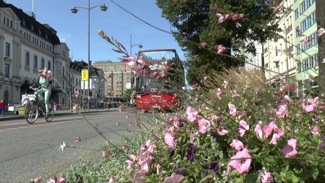 Stockholm sightseeing bus